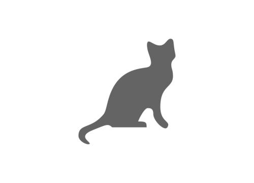 ANTA Ancona, gattile rifugio, Ancona